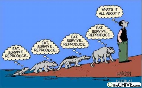evolution-cartoon-photos-27